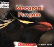 Macaroni Penguin - Eckart, Edana