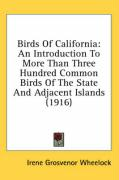Birds of California: An Introduction to More Than Three Hundred Common Birds of the State and Adjacent Islands (1916) - Wheelock, Irene Grosvenor