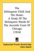 The Delinquent Child and the Home: A Study of the Delinquent Wards of the Juvenile Court of Chicago (1916) - Breckinridge, Sophonisba Preston; Abbott, Edith
