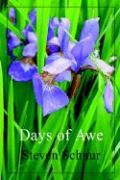 Days of Awe - Schnur, Steven