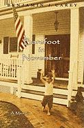 Barefoot in November - Carey, Benjamin J.