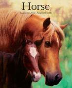 Horse - Malachy Doyle, Angelo Rinaldi