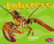 Lobsters - Rake, Jody Sullivan