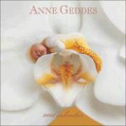 Anne Geddes Inspirational 2007 Calendar