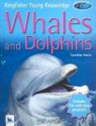 Whales and Dolphins - Harris, Caroline