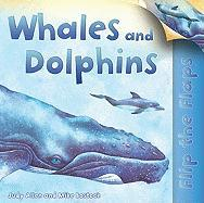 Whales and Dolphins - Allen, Judy; Bostock, Mike