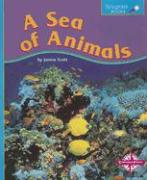 A Sea of Animals - Scott, Janine