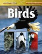 Birds - Mattern, Joanne