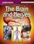 The Brain and Nerves - Webster, Christine