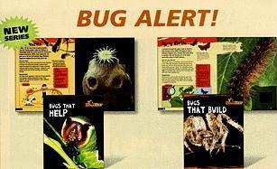 Bug Alert!