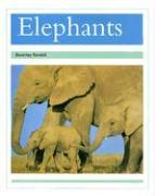 Elephants - Randell, Beverley