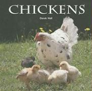Chickens - Hall, Derek