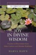Joy in Divine Wisdom: Practices of Discernment from Other Cultures and Christian Traditions - Dawn, Marva J.