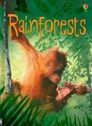 Rainforests - Beckett-Bowman, Lucy