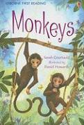 Monkeys - Courtauld, Sarah