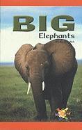 Big Elephants - Braidich, Shelby