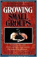 Growing Small Groups: Everything You Need to Start and Lead a Small Ministry That Makes a Big Difference - Schwanz, Floyd L.