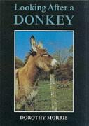 Looking After a Donkey - Morris, Dorothy