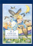 If I Could/Si Yo Pudiera - Sweetland, Nancy