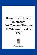 Hanes Bywyd Henry M. Stanley: Yn Cynnwys Trem AR Ei Yrfa Anturiaethus (1890) - Anonymous