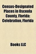 Census-Designated Places in Osceola County, Florida: Celebration, Florida