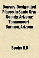 Census-Designated Places in Santa Cruz County, Arizona: Tumacacori-Carmen, Arizona