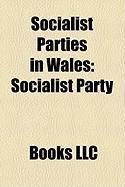 Socialist Parties in Wales: Socialist Party