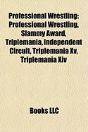 Professional Wrestling: Meter