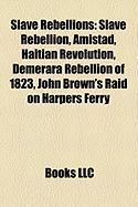 Slave Rebellions: Slave Rebellion, Amistad, Haitian Revolution, Demerara Rebellion of 1823, New York Conspiracy of 1741