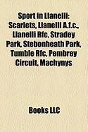 Sport in Llanelli: Scarlets