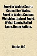 Sport in Wales: Sports Council for Wales