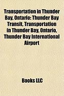 Transportation in Thunder Bay, Ontario: Thunder Bay Transit