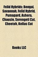 Felid Hybrids: Savannah