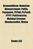 Drepanidinae: Hawaiian Honeycreeper, Palila, ?Apapane, ?I?iwi, Po?ouli,, Psittirostrini, Molokai Creeper, Rhodacanthis, Mamo