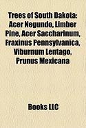 Trees of South Dakota: Acer Negundo, Limber Pine, Acer Saccharinum, Fraxinus Pennsylvanica, Viburnum Lentago, Prunus Mexicana