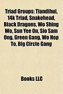 Triad Groups: Tiandihui, 14k Triad, Snakehead, Black Dragons, Wo Shing Wo, Sun Yee On, Sio Sam Ong, Green Gang, Wo Hop To, Big Circl