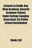 Schools in Sindh: Bay View Academy, Karachi Grammar School, Cadet College Sanghar, Rcpschool, Sst Public School Rashidabad