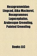 Hexagrammidae: Lingcod, Atka Mackerel, Hexagrammos Lagocephalus, Arabesque Greenling, Painted Greenling