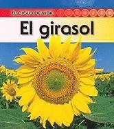 El Girasol = Sunflower - Royston, Angela