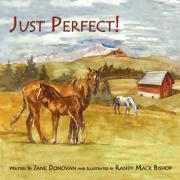 Just Perfect! - Donovan, Jane