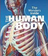 The Human Body - Stradling, Jan