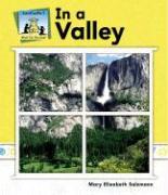 In the Valley - Salzmann, Mary Elizabeth