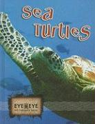 Sea Turtles - Rodriguez, Cindy