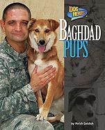 Baghdad Pups - Goldish, Meish