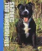 Staffordshire Bull Terriers - Libey, Tracey