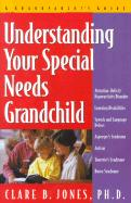 Understanding Your Special Needs Grandchild: A Grandparents' Guide - Jones, Clare B.