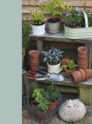 Kitchen Garden Lined Journal