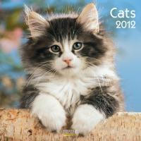 Cats 2012. Broschürenkalender