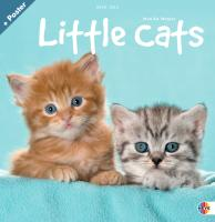 Little Cats Broschurkalender 2012