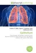 Epithelium